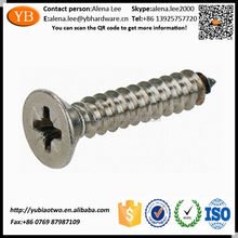 Competitive Advantage Sus316 Hex Socket Head Self Tapping Screw ISO/TS16949 Passed