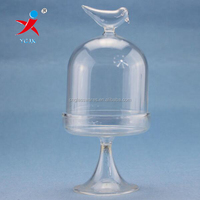 Glass display with bird standing topper decoration