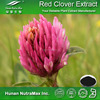 Hot sale Plant extract Organic red clover herb extract/Red clover P.E./Redclover powder extract