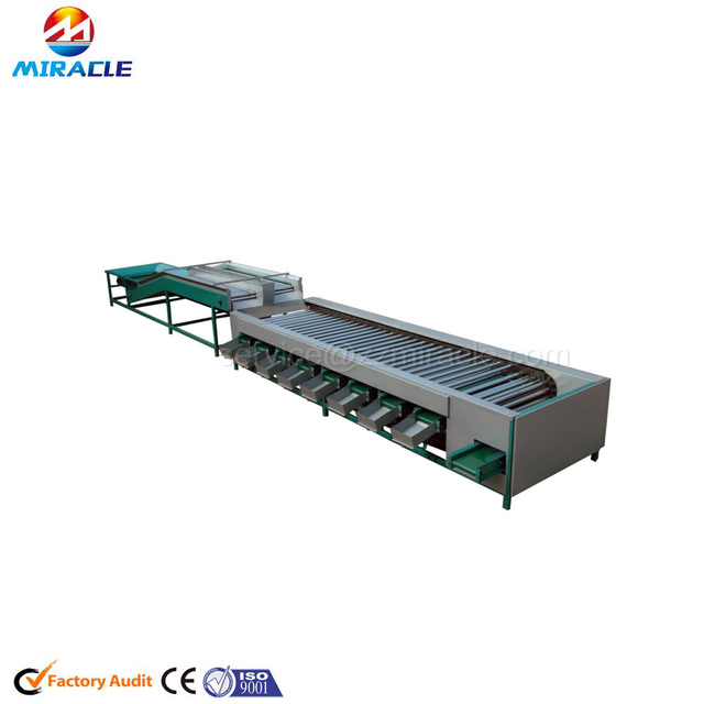 Roller type widely use cherry tomatoes size grading or sorting machine for different fruits or vegetables