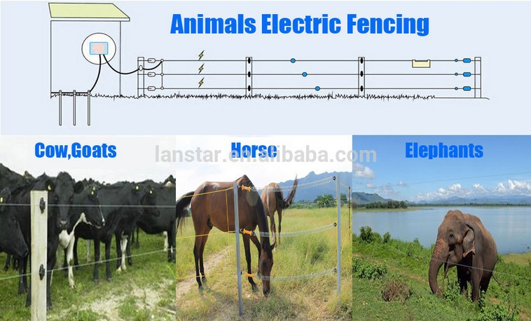 solar panel battery electric fencing system security energizer for farm