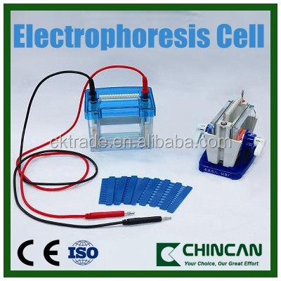 Electrophoresis Cell for protein molecule transfer