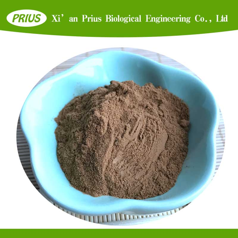natural herb extract common bletilla rubber extract Bletilla striata extract