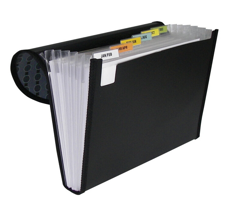 Hanging File Folders, Letter, Assorted - 20/Box