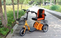 Electric Tricycle Used TCN 2016