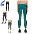 Quick Dry Wholesale Running Tights High Waist Leggings for Women