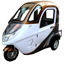 2018 New 800W Motor 3 Wheels with Cabine Enclosed Trike