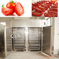 Hot sale food grade stainless steel material tomato drying machine