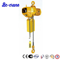 small mini weight electric kito chain hoist 1 ton 1000kg