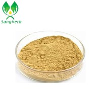 anti-oxidant and Very rich vitamin organic Sea Buckthorn Fruit Powder/holy thorn extract