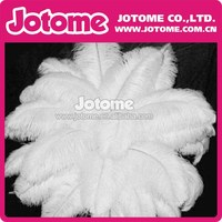 Gorgeous Wedding Table Decoration Fashion Wholesale White Ostrich Feathers for Party / Holidays / Garment