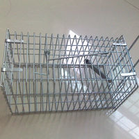 rat breeding cage
