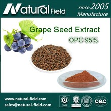 Factory Direct Supply Organic Grape Seed Extract Powder OPC 95%