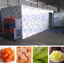 Rich export experience food/fruit and vegetable dryer
