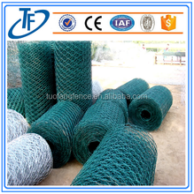 Hexagonal Wire Galvanized/Hexagonal Wire Netting/Chicken Wire mesh