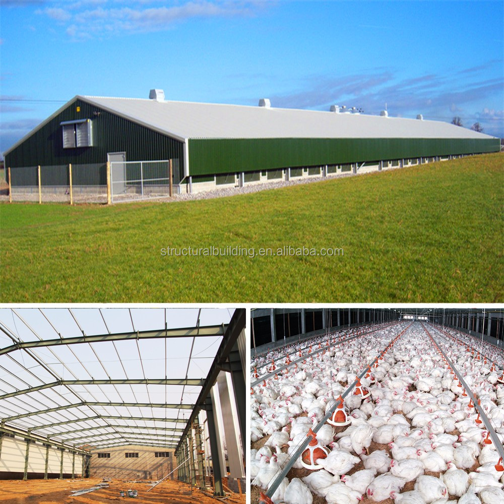 light steel structure mobile store types of chicken farm building