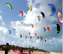2011 New 2.5m 2 Line Stunt Parafoil Power Sport Kite