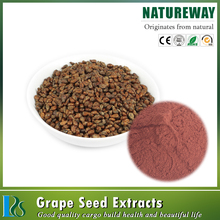 Natural Organic grape seed extract 95% Proanthocyanidins OPC grape skin extract Resveratrol grape seed extract powder