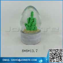 Wedding snow globe, cactus water globe with egg shape glass ball