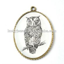 Fashion New Design Photo Frame Owl Pendant with Necklace Metal Accessories