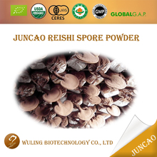 Natural organic lingzhi reishi essence spore powder for liver protection
