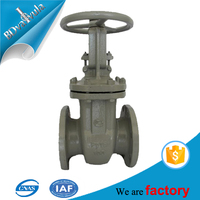 Rising spindle petroleum pipe fitting full-port gost gate valve