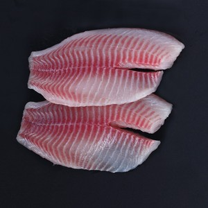 Frozen Tilapia fish fillet in fish with good price