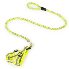 Fashion innovative pet products durable dog training leash and collar