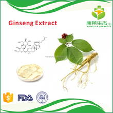Professional Manufacture Panax Ginseng Root Extract Powder
