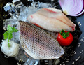 fresh tilapia fillets good quality