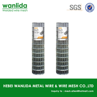 Q195 galvanized cheap welded wire mesh for sale ( SGS )