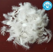 RDS certified white Duck Feather washed 2-4cm for bedding