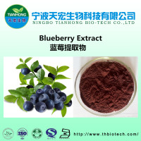 blueberry powder bulk manufacturer