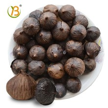 japanese black garlic price for cambodia countries production of garlic