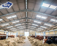 DFX Low cost steel structure cattle farm cattle shed