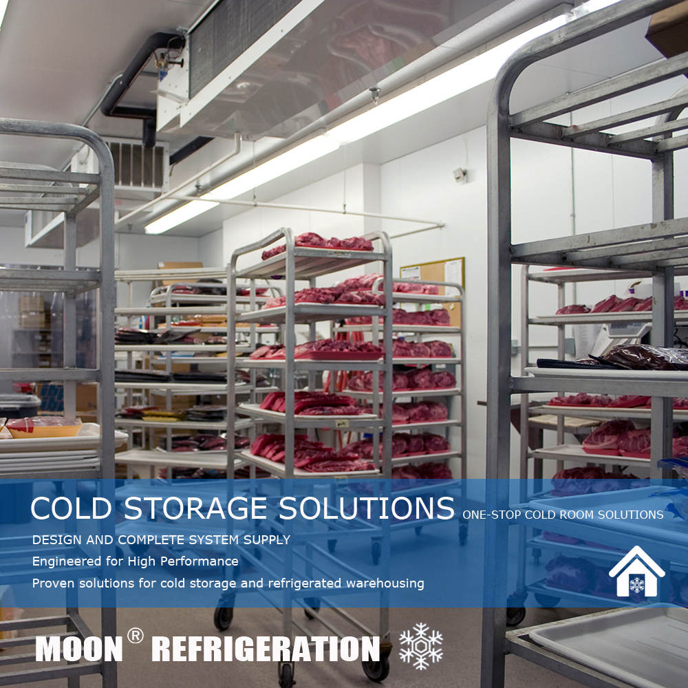 MOON CE commercial frozen cold room for meat and fish used in freezer cold room
