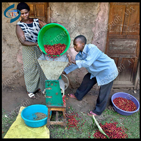 Popular selling in Africa NEW condition coffee processing plant