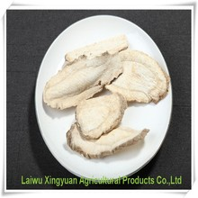 Good quality 100% Nature extract radix angelicae