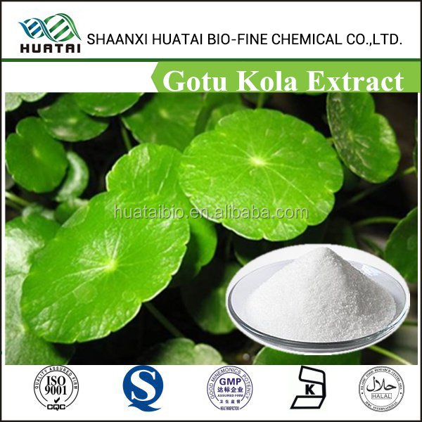 Factory supply Triterpenoid Saponis 10%~80% Hplc/pure and natural Gotu Kola Extract