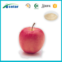 Highly Recommended Apple Cider Vinegar Powder Apple dried vinegar powder