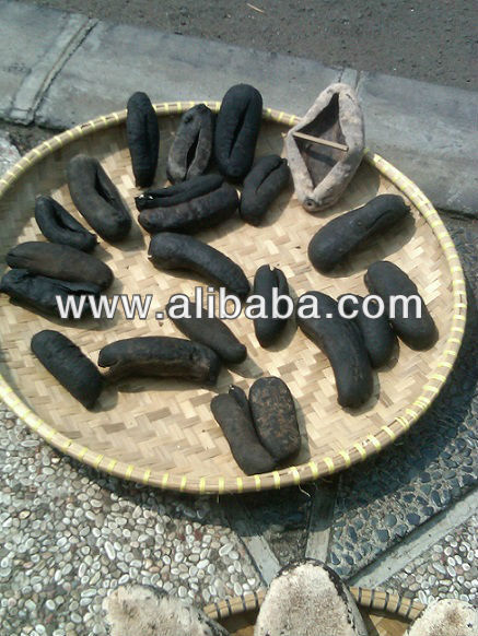 Dried Sea Cucumber Kapuk - Stone Fish
