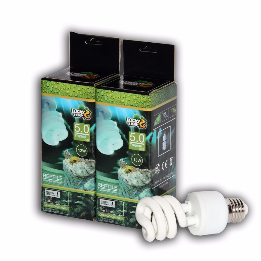 reptile lighting supply