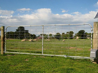 Used Fence for Horse, Galvanized Fence Posts,