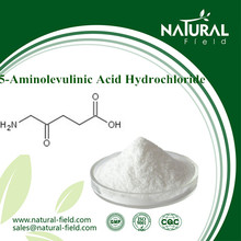 High effective plant growth regulator 5-aminolevulinic acid hydrochloride 99% powder