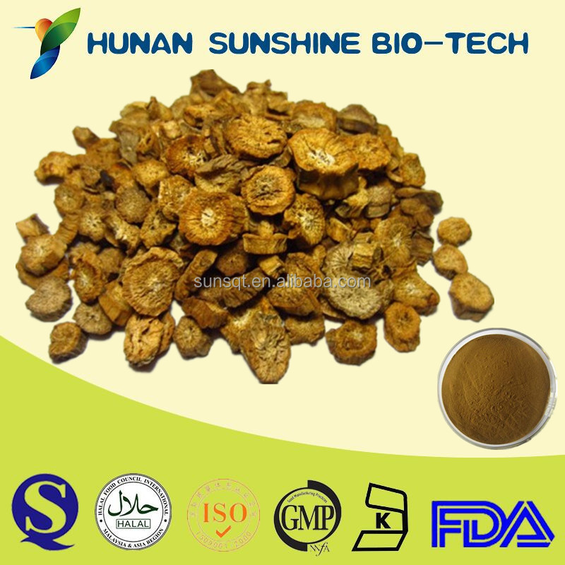 Pharmaceutical Raw Material Curing Nephritis Chinese Burdock Root Extract