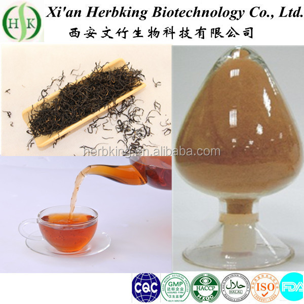 plant extract natural red tea extract tea Polyphenol black tea extract