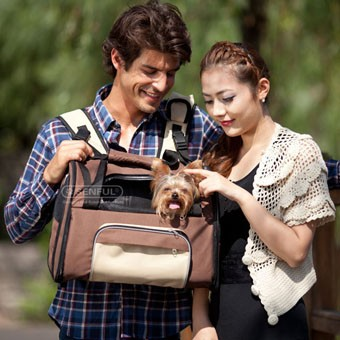Dog carrier name brand backpacks