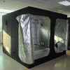 240x240x200 Greenhouse For Sale Grow Tent
