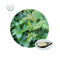 anti-hangover herbal extract raw material vine tea extract dihydromyricetin DHM 98%