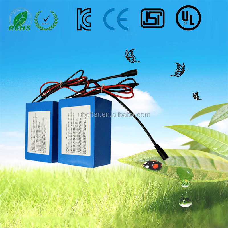 Lithium Ion Battery Cell 18650/Lithium Battery 48V for samsung battery cell